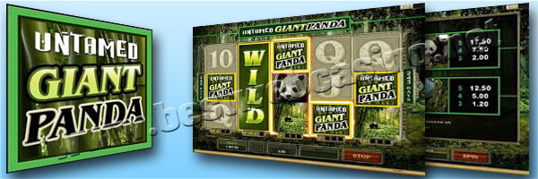 slot machine online gratis Untamed Giant Panda